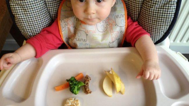 Iris-iris makanan untuk finger food