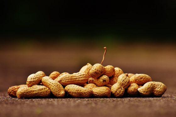 Kudapan Kacang-kacangan