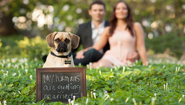 foto pre-wed unik