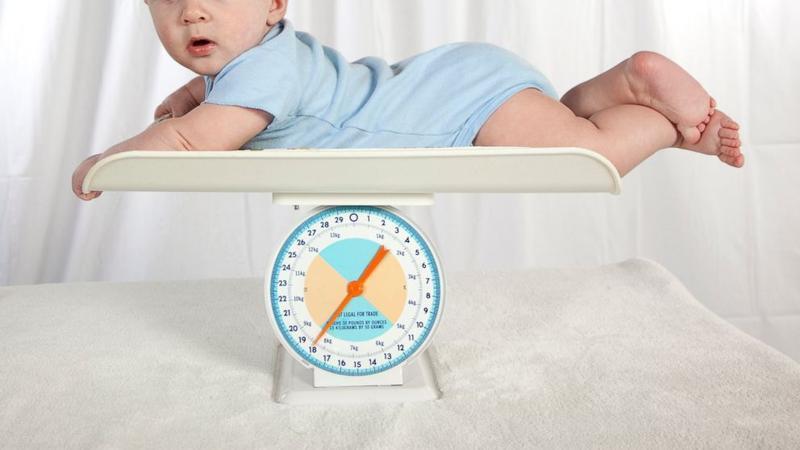 7 Tips Agar Bayi Cepat Gemuk Dalam Waktu Singkat Mamapapa Id