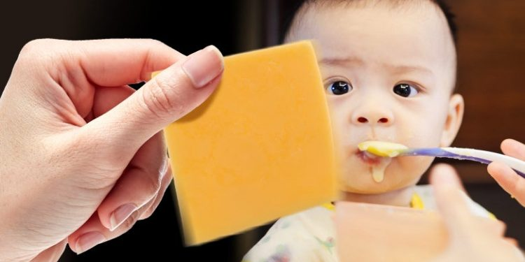 keju untuk bayi