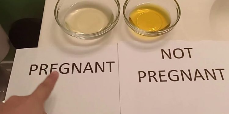 Tes kehamilan dengan gula