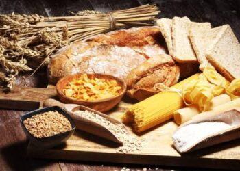 Pentingnya Karbohidrat